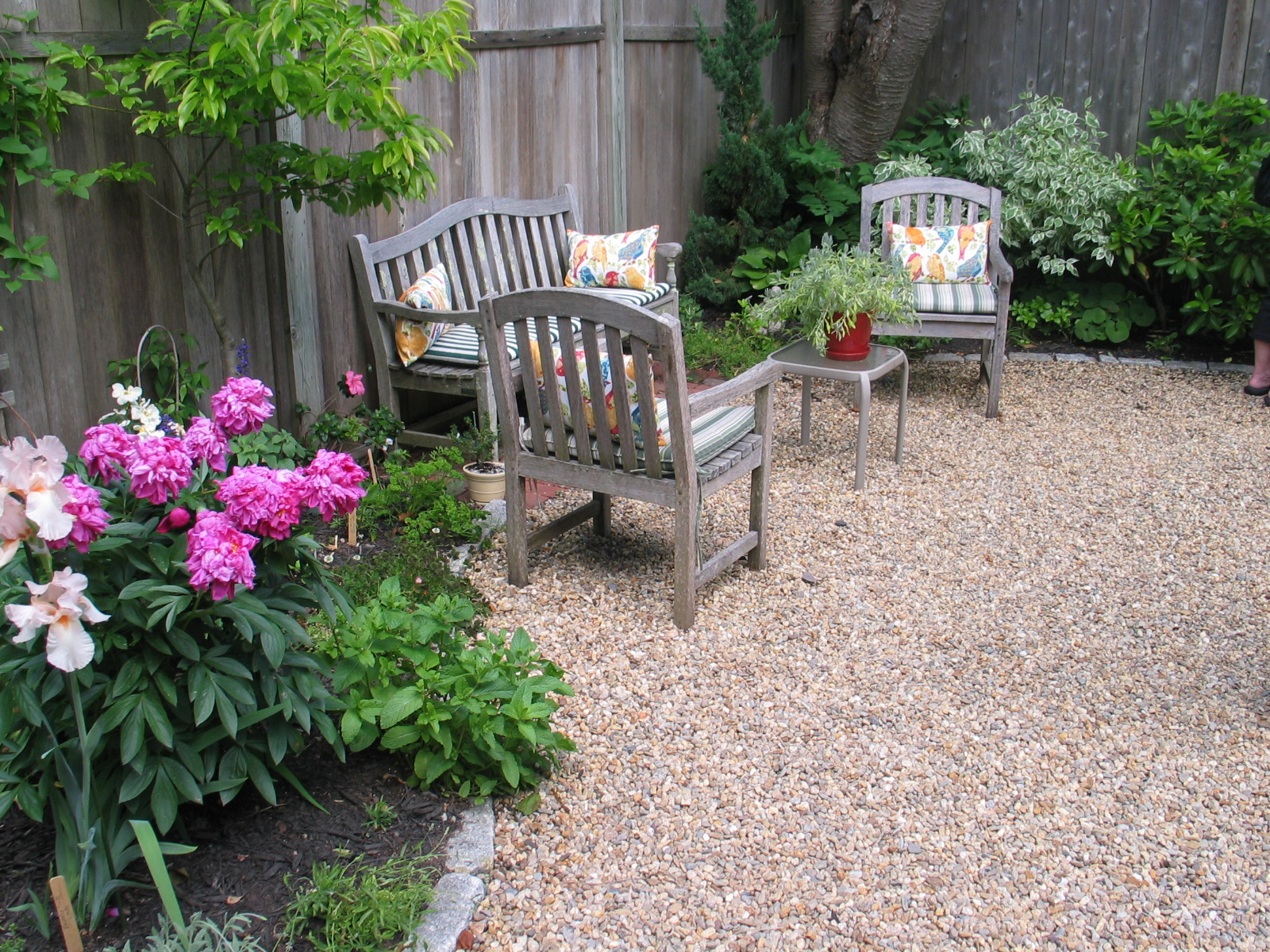 A gardener eliminates the lawn american gardening for Gravel garden designs
