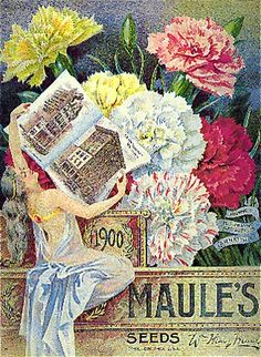 The Maule Seed Catalog of 1900, courtesy of Christine Faller on Pinterest