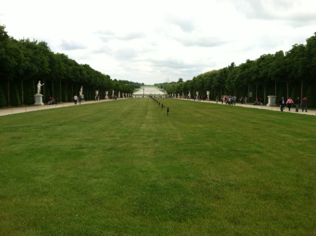 The lawn plays an important here in the formal garden of Versailles, designed in XXXX.