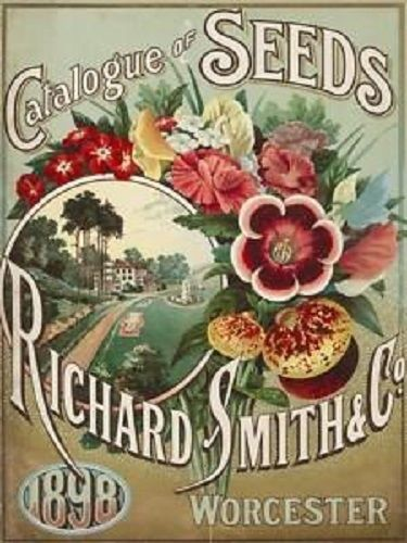 Smith Worcester Catalog 1898