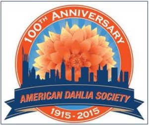 American Dahlia Society 100 years old