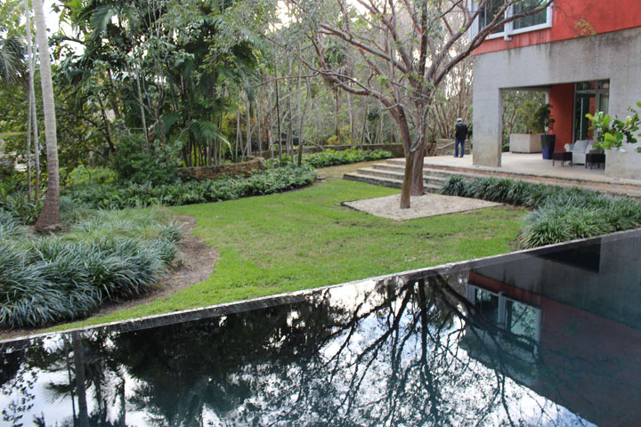 Florida garden with a modern design
