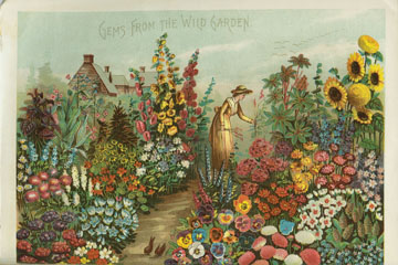 Rawson_1888_garden very small