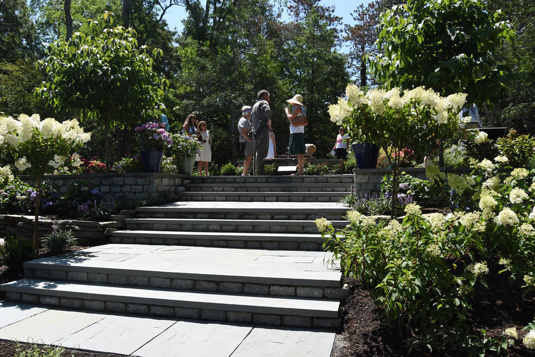 New Hydrangea Test garden in Sandwich, Mass.